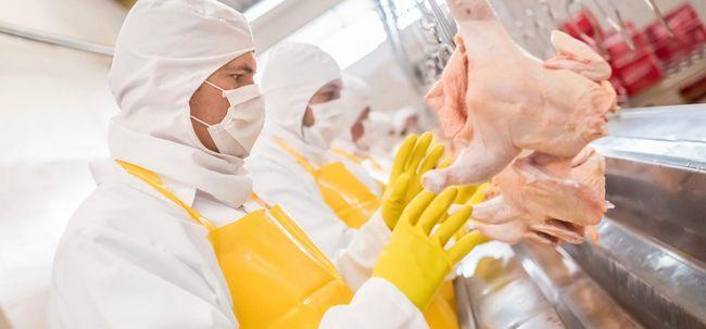 9 Maneras de comer alimentos procesados hicieron el mundo enfermo y grasas